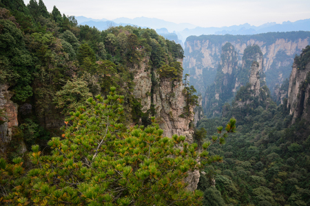 magnificence: Rock mountains with green valley at Zhangjiajie National Park in Hunan, China. Zhangjiajie is a unique national forest park located in northern Hunan Province. Stock Photo