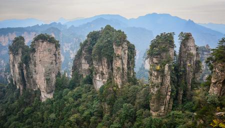 후난, 중국에서 장가계 국립 공원에서 바위 산. 장가계는 후난 성 북부에 위치한 독특한 국립 삼림 공원입니다.