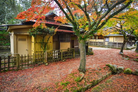 Autumn scenery with traditional wooden houses and Japanese garden Editorial