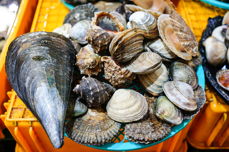 Fresh clams for sale at a fishing market in Asia. Stock Photo