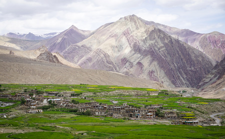 A Tibetan village at green valley in Ladakh, India. Ladakh is the highest plateau in the state of Jammu & Kashmir with much of it being over 3,000m. Stock Photo