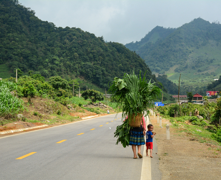 Sapa, Vietnam - May 26, 2016. Hmong people carry grass on mountain road in Sapa, Vietnam. Sapa is a frontier township and capital of Sa Pa District in north-west Vietnam.