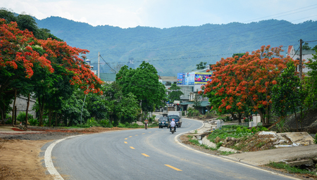 Sapa, Vietnam - May 25, 2016. Mountain road with flamboyant trees at summer in Sapa, Vietnam. Sapa is a frontier township and capital of Sa Pa District in north-west Vietnam. Editorial