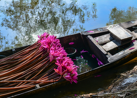 A wooden boat carrying waterlily flowers at sunny day in summer time.