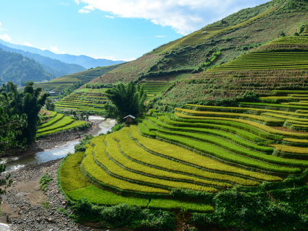 Landscape of terraced rice field in Northern Vietnam. Terraced rice fields in Vietnam were voted as one of seven most beautiful and impressive ones of Asia and the world.