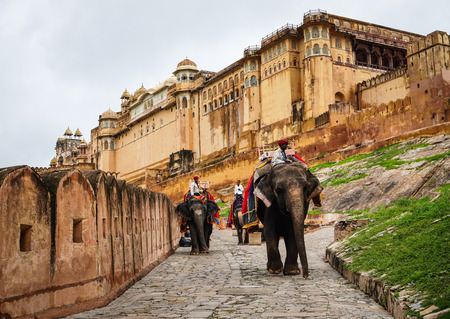 Jaipur, India - Jul 28, 2015. Decorated elephants going on the cobblestone path to Amber Fort near Jaipur, India. Elephant rides are popular tourist attraction in Amber Fort.