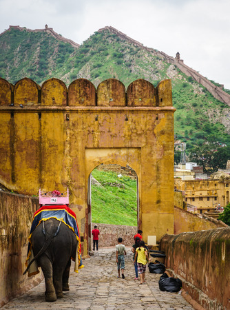 Jaipur, India - Jul 28, 2015. Decorated elephants going on the cobblestone path to Amber Fort in Jaipur, India. Elephant rides are popular tourist attraction in Amber Fort.