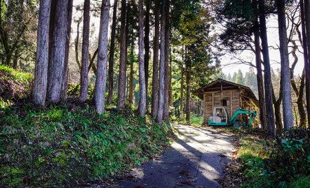 A wooden house at pine tree forest in Gifu, Japan.