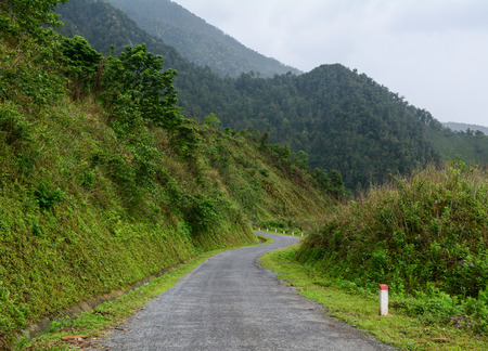 dalat: Mountain road at misty day in Sapa, Vietnam. Sapa is a beautiful, mountainous town in northern Vietnam along the border with China.