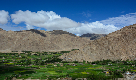 Green valley under blue sky at sunny day in Ladakh, India. Ladakh is the highest plateau in the state of Jammu & Kashmir with much of it being over 3,000m.