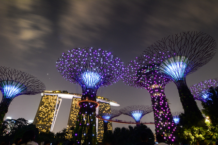Singapore - 5 juli 2015. Het Supertree Grove bij Gardens by the Bay in de nacht in Singapore. The Gardens is een natuurpark dat bestaat uit 101 hectare (250 hectare) drooggelegde grond.
