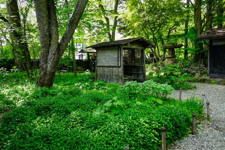 a wonderful world: Ancient houses at Japanese garden with green trees in summer.