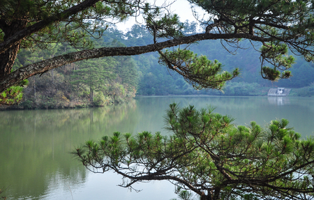 Landscape of Dalat Highlands at spring time in Vietnam. Da Lat is located 1,500 m above sea level on the Langbian Plateau. Stock fotó