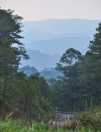 Landscape of Dalat Highlands with pine tree forest in Vietnam. Da Lat is located 1,500 m above sea level on the Langbian Plateau.