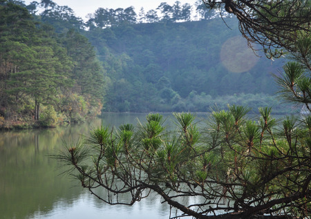 Landscape of Dalat Highlands at sunny day in Vietnam. Da Lat is located 1,500 m above sea level on the Langbian Plateau. Stock fotó