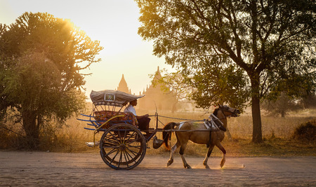 Bagan, Myanmar - Feb 19, 2016. A horse cart carrying tourists on dusty road at sunset in Bagan, Myanmar. Bagan in central Burma is one of the worlds greatest archeological sites.