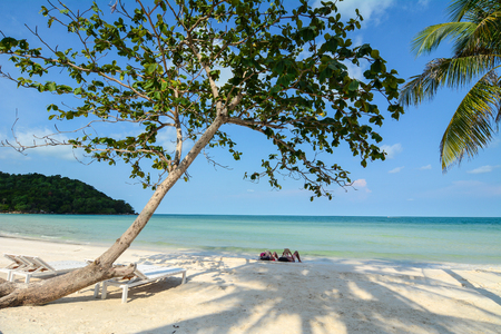 Tropical beach with coconut trees at sunny day in Phu Quoc Island, Vietnam. Phu Quoc Island boasts idyllic beaches, romantic sunsets and evergreen forests.