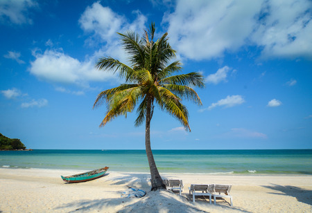 White sand beach with coconut tree and a boat in Phu Quoc Island, Vietnam. Phu Quoc Island boasts idyllic beaches, romantic sunsets and evergreen forests.