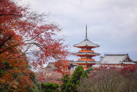 literally: Kiyomizu-dera with autumn trees in Kyoto, Japan. Kiyomizudera (literally Pure Water Temple) is one of the most celebrated temples of Japan.