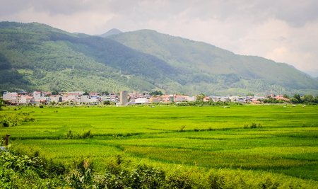 Beautiful rice field in Northern Vietnam. Vietnam is one of world richest agricultural regions and is the second-largest exporter worldwide.
