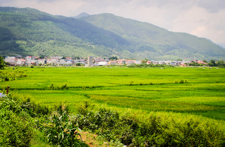 Beautiful rice field with small township in Northern Vietnam. Vietnam is one of world richest agricultural regions and is the second-largest exporter worldwide.