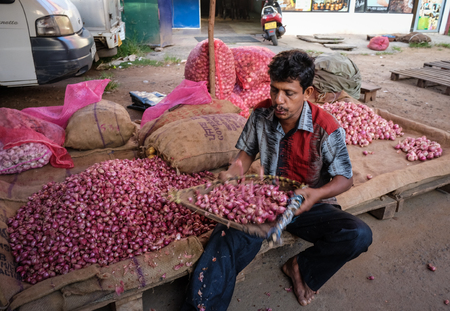 Colombo, Sri Lanka - Sep 5, 2015. A vendor selling onion at rural market in Colombo, Sri Lanka. Colombo is the commercial capital and largest city of Sri Lanka, with a population of 5.6 million.