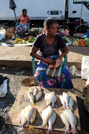 Colombo, Sri Lanka - Sep 5, 2015. A vendor sitting at fishing market in Colombo, Sri Lanka. The Colombo Metropolitan area has a GDP of $48 billion or 40 percent of the GDP. Editorial