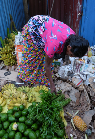 Colombo, Sri Lanka - Sep 5, 2015. A woman selling fruits at local market in Colombo, Sri Lanka. Colombo is the commercial capital and largest city of Sri Lanka, with a population of 5.6 million.