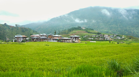 Paddy rice field with rural houses at the Sopsokha village, Bhutan. Agriculture has a dominant role in Bhutan economy. Reklamní fotografie
