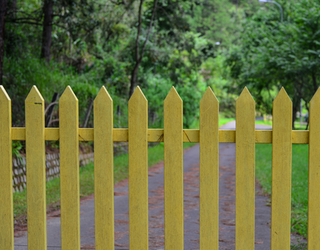 Yellow wooden fence with walkway in pine tree forest. Stock Photo