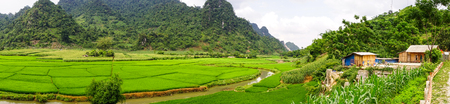 Panorama view of terraced rice field with mountains in Sapa, Northern Vietnam. Stock Photo