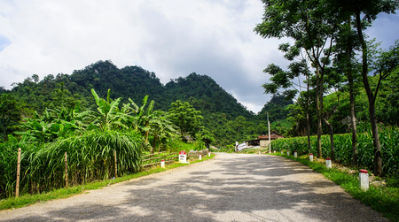 frequented: Mountain road at sunny day in Ha Giang, Northern Vietnam. Ha Giang province in northern Vietnam is less frequented by tourists.
