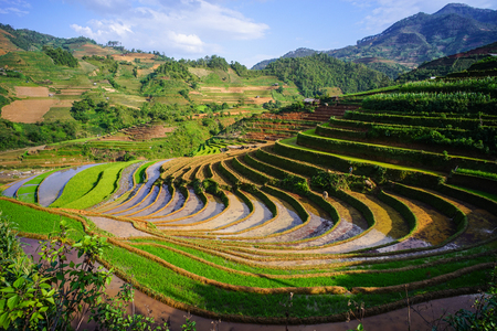 Terraced rice field in Lao Cai Province, Northern Vietnam. Lao Cai is a frontier province located within the northern Plains and Midland region of Vietnam. Stock Photo