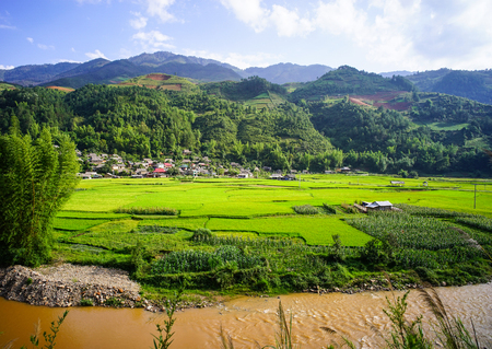 Terraced rice field in Yen Bai, Vietnam. Yen Bai is an agricultural-based province located in northern-central Vietnam. Stock Photo