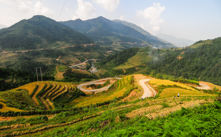 View of terraced rice field in Sapa, Vietnam. Terraced rice fields in Sapa were voted as one of seven most beautiful and impressive ones of Asia. Stock Photo