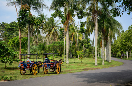 Java, Indonesia - Apr 15, 2016. Horse carts waiting at Borobudur Temple on Java, Indonesia. The Borobodur Complex is one of the greatest monuments in the world.