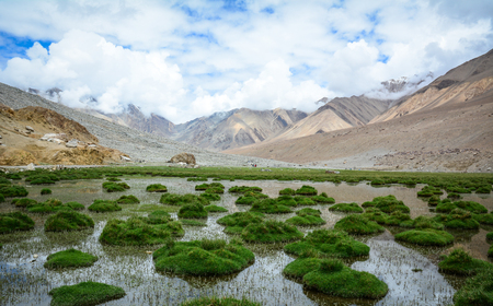 Grassland with mountains in Ladakh, India. Ladakh is the highest plateau in the state of Jammu & Kashmir, with much of it being over 3,000m.