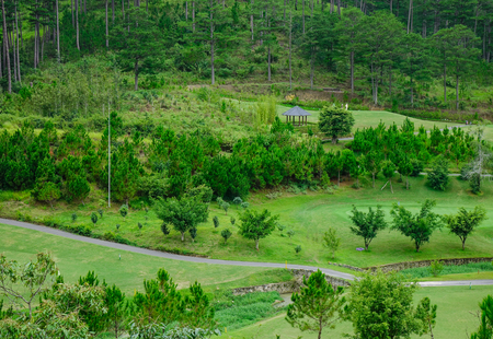 Golf course with pine forest in Dalat, Vietnam. Da Lat is located 1500 m above sea level on the Langbian Plateau.