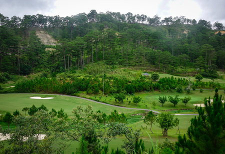 Pine hill at sunny day in Dalat, Vietnam. Da Lat is located 1500 m above sea level on the Langbian Plateau.