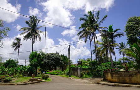 Port Louis, Mauritius - Jan 6, 2017. Rural road with palm trees at sunny day in Port Louis, capital of Mauritius. Port Louis is the business and administrative capital of the island.
