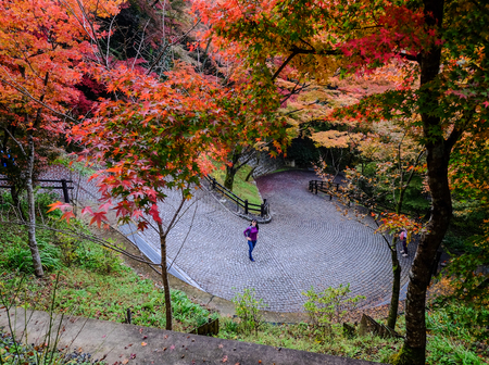 Kyoto, Japan - Nov 19, 2016. People walking on road at autumn in Kyoto, Japan. Kyoto is famous for its numerous classical Buddhist temples, as well as gardens, imperial palaces.