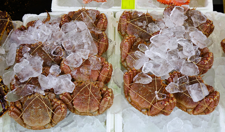 King crabs at Asaichi Market. Morning Fish Market is a must-see attraction for anyone visiting the city of Hakodate, Hokkaido, Japan.