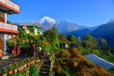 Ghandruk, Nepal - Oct 20, 2017. A beautiful teahouse on the hill at sunrise in Ghandruk, Nepal. Ghandruk is a popular place for treks in the Annapurna range of Nepal. Editorial