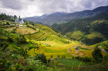 Mountain scenery with rice fields in Northern Vietnam. Rice terraces are slopes claimed from nature for cultivation in hilly or mountainous areas. Stock Photo