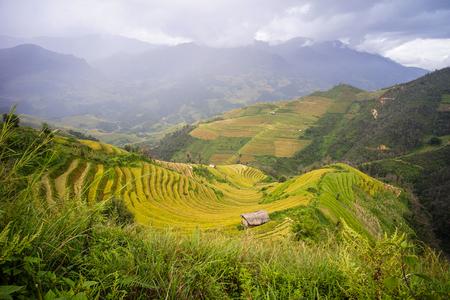 Terrasvormig padieveld met plattelandshuisje in Sapa, Noordelijk Vietnam. Sa Pa heeft de grootste markt in de provincie en is ook beroemd om de terrasvormige rijstvelden. Stockfoto