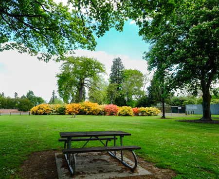 Botanic garden in the central city of Christchurch, New Zealand. Stock Photo