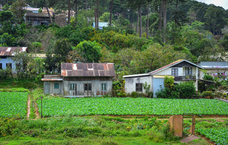 Rural houses in Dalat, Vietnam. Dalat is a city located on Lang Biang highlands, part of the Central Highlands of Vietnam.