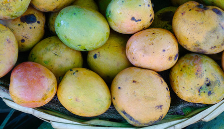 Sweet mango fruits at the rural market in Port Louis, Mauritius.