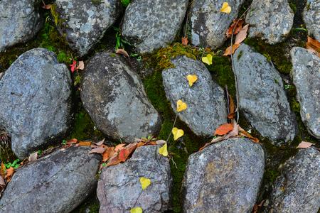 Stone wall with autumn leaves on Mount Koya in Wakayama, Japan. Stock Photo