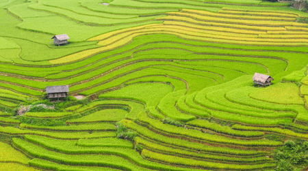 Terraced rice field with traditional houses in Ha Giang Province, Northwest of Vietnam.